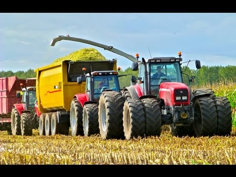 Mais hakselen Van Bakel Dairy 2012 - Jaguar 980, MF 8690, MF 7495, USA Equipment Music Videos