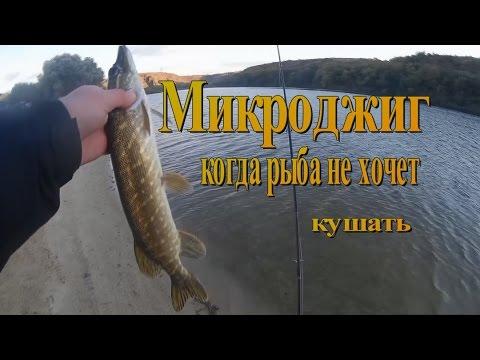 рыбалка на тишках в мае