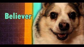 download musica Imagine Doggos - Believer