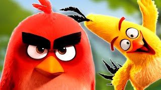 The Angry Birds Surprise Egg Test HD Movie 2016 Trailer by supercool4kids