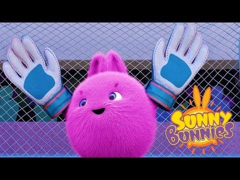 Cartoons for Children | SUNNY BUNNIES - SOCCER KEEPER | Funny Cartoons For Children