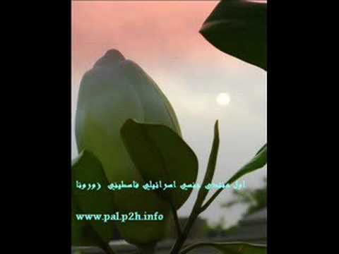Israel Sex Arab video