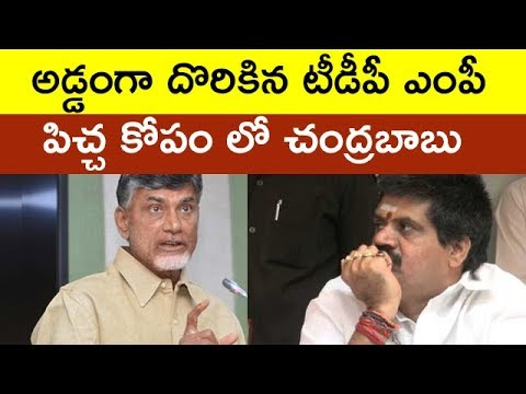 Chandrababu Naidu Angry On TDP MP | Taja30