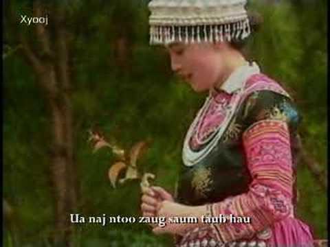 项定秀假如你是一朵花Mim Haam - Kheev Lam Koj Yog Ib Rev Paj (New Edit Version)