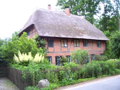 Thatch Definition Crossword Dictionary