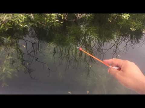 ловля спиннингом летом на мормышку видео