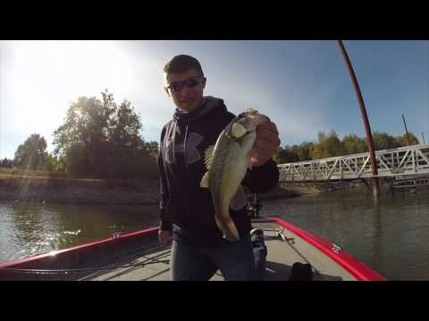 Fall Cold Fronts- Bass Fishing
