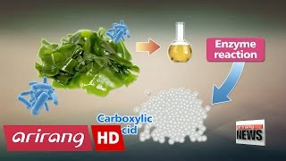 Korean scientists develop manufacturing technology for eco-friendly algae bioplastics