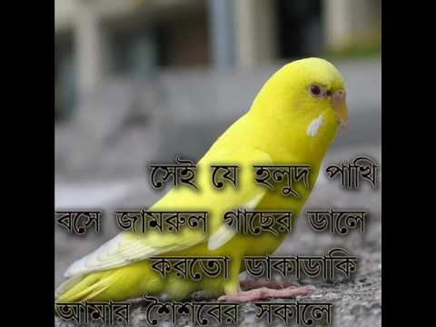 SEI JE HOLUD PAKHI _ BANGLA BAND -CACTUS.wmv