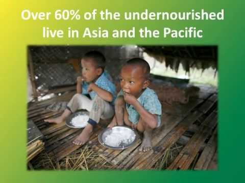 Zero Hunger Challenge - Asia-Pacific Launch 2013