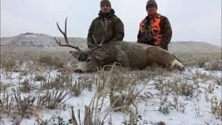 Birthday Buck - Eastern Montana Deer Hunt