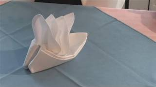 How To Make A Bird Of Paradise Napkin