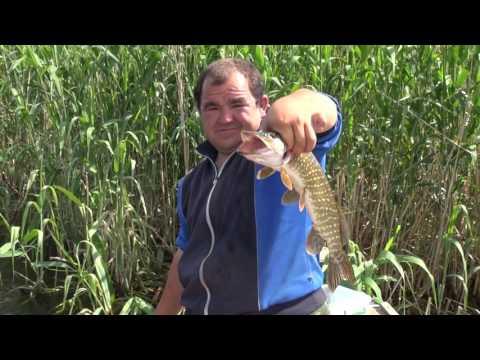 рыбалка вышка весна 2017