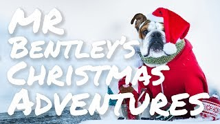 Bentley Visuals - Bulldog Christmas Helicopter Adventure