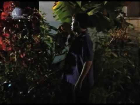 Sombras en la Noche  - SOLDADO DEL AMOR - 26/95