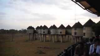 Kenia 2011