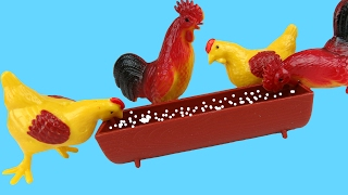 Feeding the Chicken - Rooster and Hen Eat grains , seeds - Barn - Farm Toys Animals