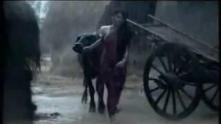 Amare Chariya  Bondhu Koi Roila Re