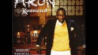 Watch Akon Shake Down video