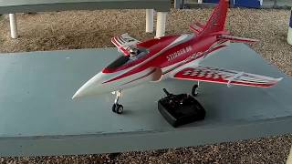 Freewing Stinger 90mm - Maiden Flight