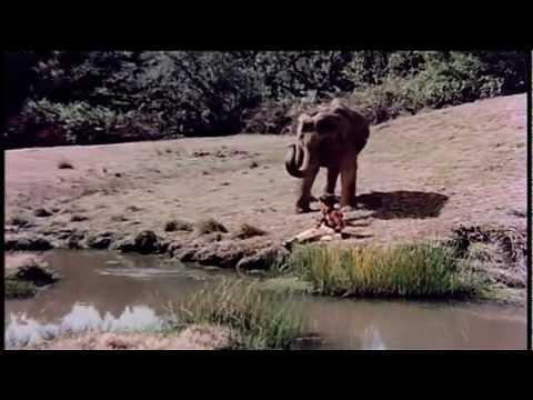 Haathi Mere Saathi video