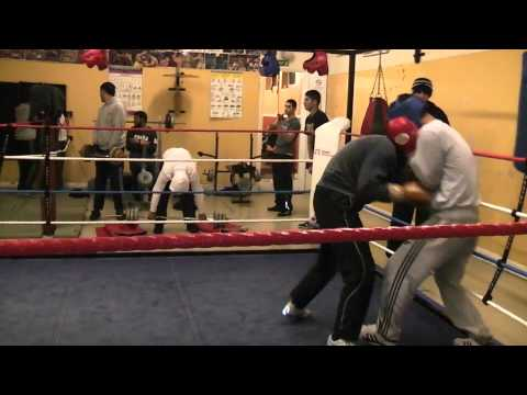 Amatuer Boxing sparring  (HL 2) Image 1