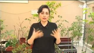 سيدة سعودية تحول منزلها إلى مزرعة