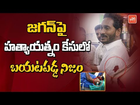 YS Jagan Vizag Airport Case Details Revealed | YSRCP | AP Politics | Waiter Srinivas | YOYO TV