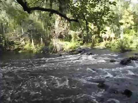 Wet Foot Video of Hillsborough River Rapids