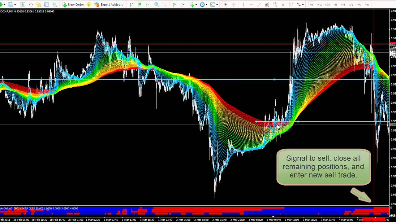 Pbn trade forex mt4