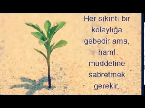 M. Fethullah Gülen Hocaefendi SABIR