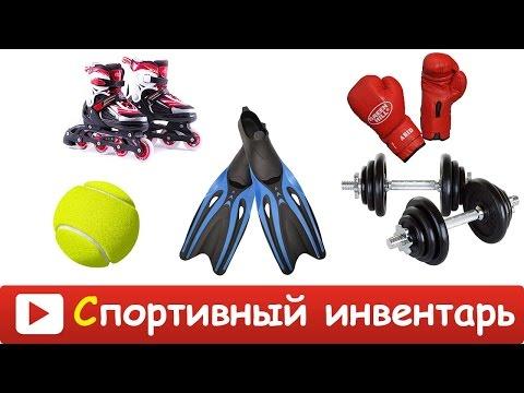 [ СПОРТИВНЫЙ ИНВЕНТАРЬ для ДЕТЕЙ ] Развивающие ВИДЕО про спортивный инвентарь и спорт для детей HD