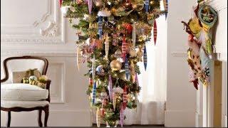 Most Beautiful Trees Christmas Celebrations