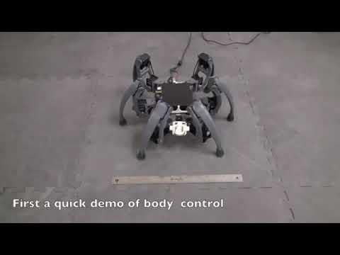 UA RNSL Intel Hexapod: 3D Balance Gestures
