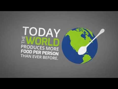 The Zero Hunger Challenge - Food prices and the market