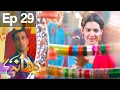 Dhaani - Episode 29 | Har Pal Geo