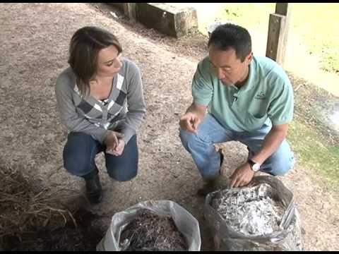 Novo Campo - 07/07/13 - Como fazer compostagem - Parte 1