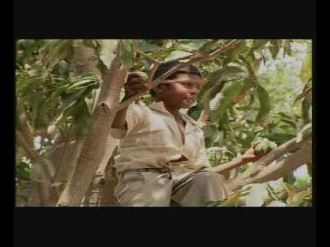 Lost Childhood - Documentary by Naya Jeevan