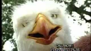 Eagleman (The Original)