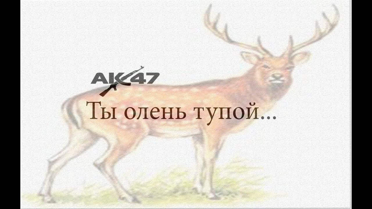 ты тупой олень: