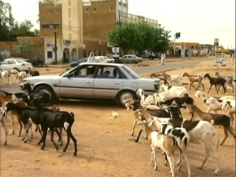 Senegal: Beyond Tradition