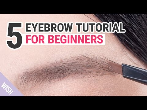 Eyebrow Shaping Tutorial for Beginners   Wishtrend TV