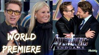 Avengers: Endgame World Premiere Interview | Cast Gets Emotional | 2019