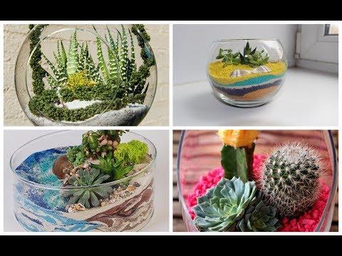 Растения в бутылках своими руками