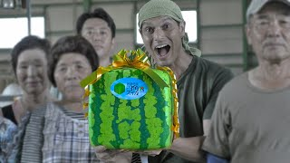 Square Watermelon Farming ★ ONLY in JAPAN