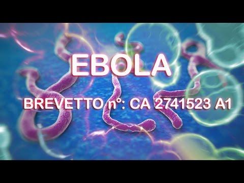 Il Virus Ebola è un Brevetto degli Stati Uniti -Guarda le prove e CONDIVIDI