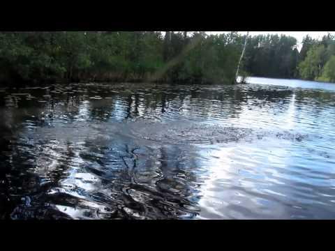 тойлук рыбалка