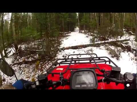 Honda TRX 350 Dog Runner!