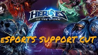 Blizzard Cancels Heroes Of The Storm eSports Plans, Hanging Players Out To Dry