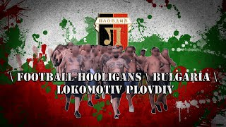 Football hooligans \ Bulgaria \ Lokomotiv Plovdiv \ Околофут